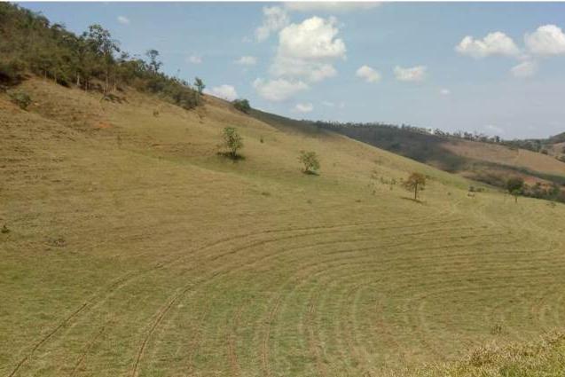 Técnicas de conservação do solo adotadas pela CENIBRA auxiliam no combate a escassez hídrica na Bacia do Rio Doce