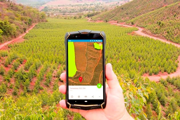 CENIBRA utiliza soluções tecnológicas para monitorar florestas