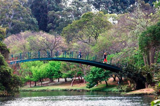Parques municipais serão reabertos durante a semana em São Paulo